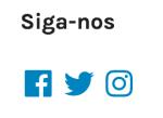 WIdget de Ícones Sociais: resultado